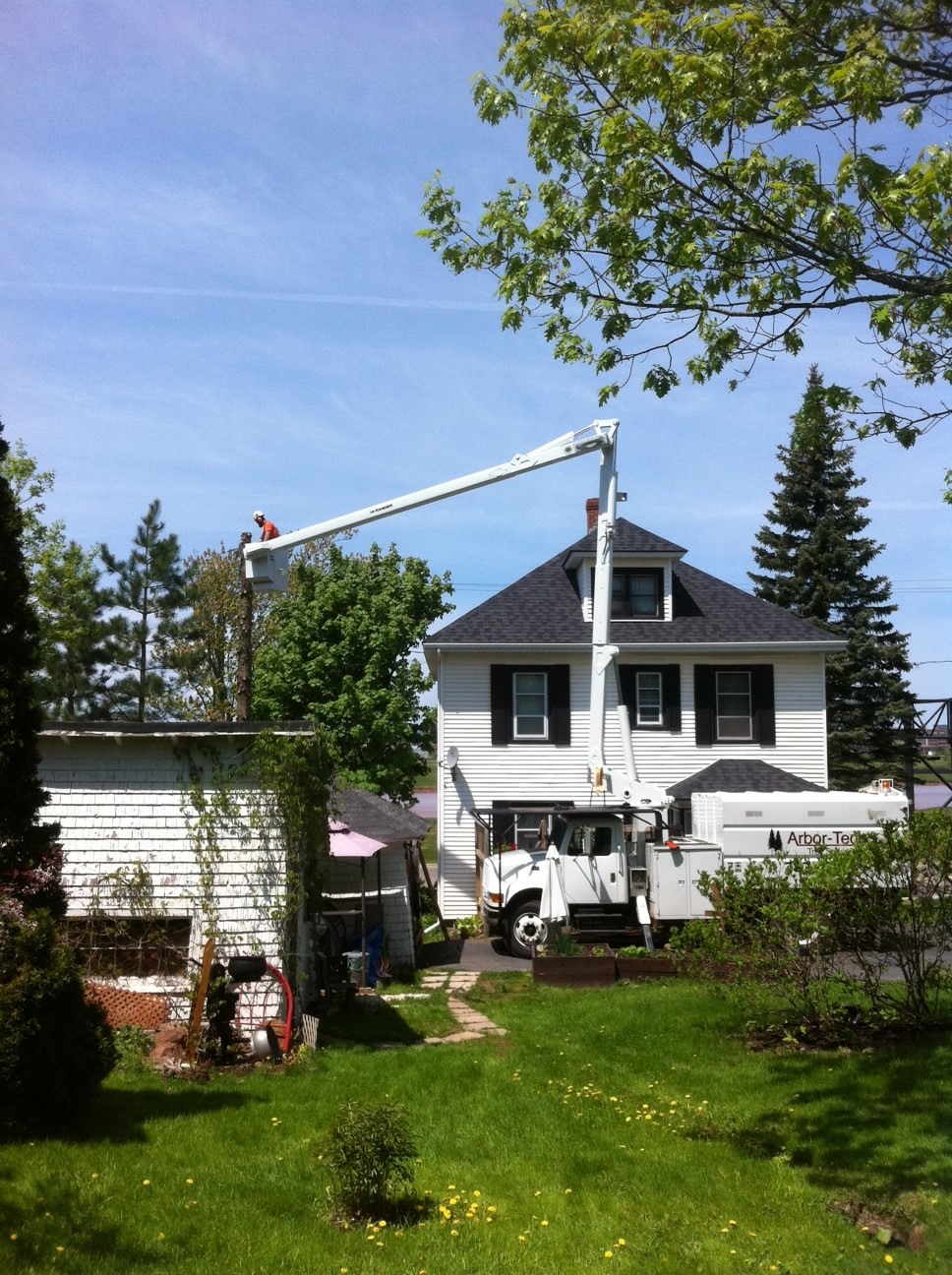 Arbor-Tech_Tree_Service_pic04