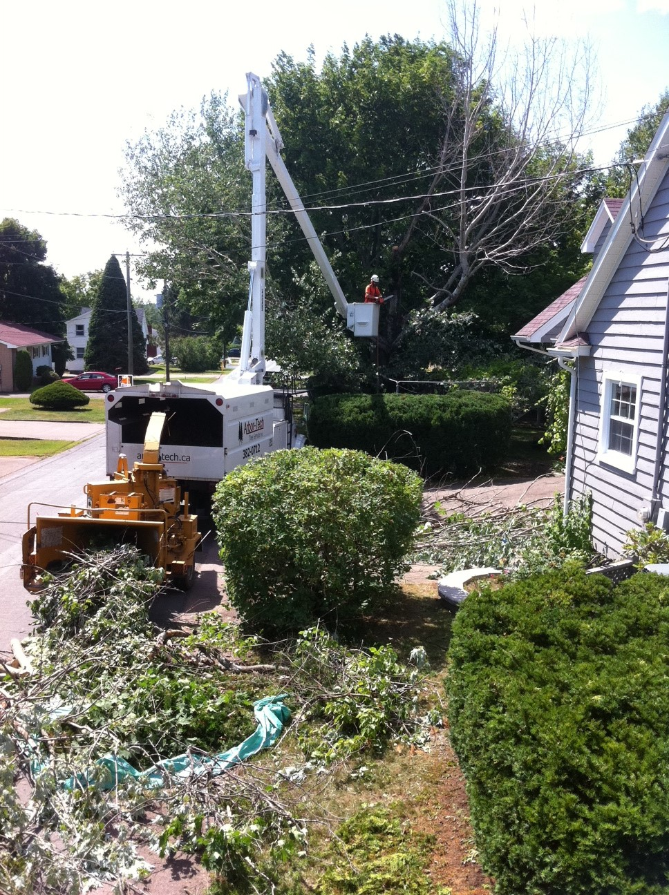 Arbor-Tech_Tree_Service_pic07