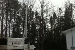 Arbor-Tech_Tree_Service_pic12
